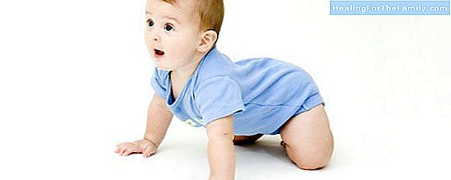 Baby crawling. Stages and care