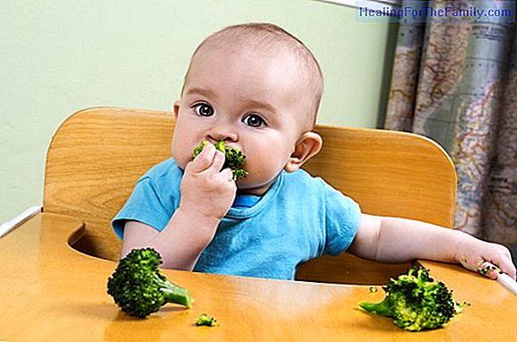 Introduction of solid foods in the baby's diet