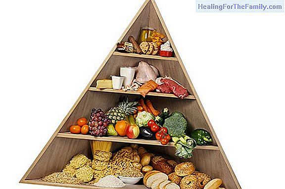 Nutritional pyramid in children's diet