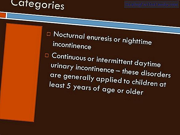Urinary schedule for children to control nighttime pee