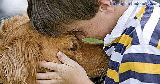 What benefits do pets bring to children