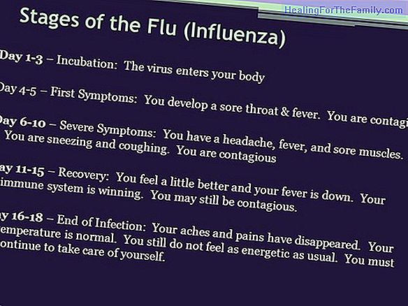What it is and what are the symptoms of the H1N1 flu or Influenza