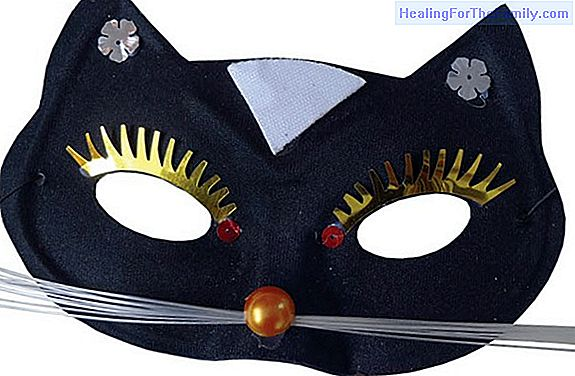 Cat mask. Carnival Crafts