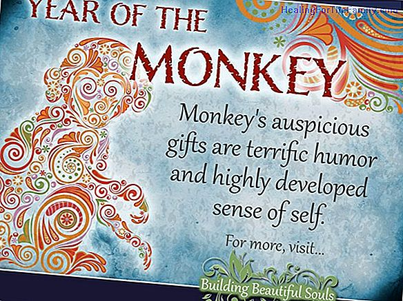 Chinese horoscope for children of the sign Monkey