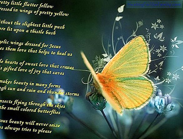 Flying you go butterfly. Poem with rhyme for children
