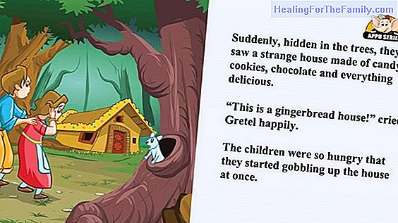 Hansel and Gretel. Children's story in English