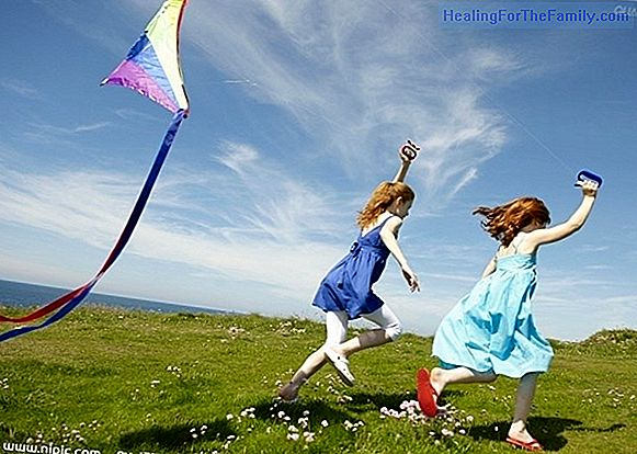 How and where to fly a kite with children