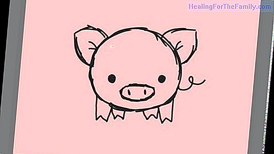 How to make a drawing of a pig step by step