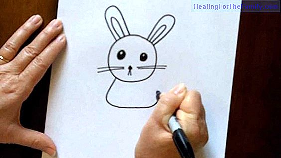 How to draw a rabbit. Children's drawings of animals