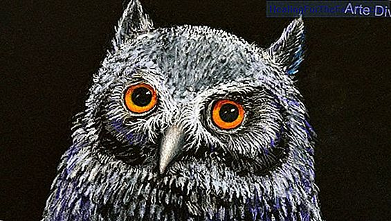 How to make a drawing of an owl step by step
