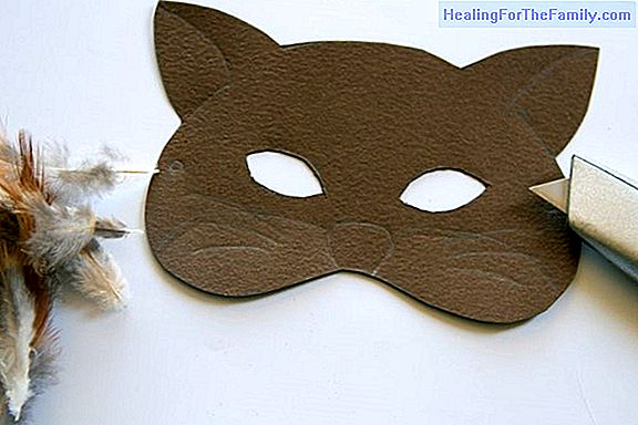 How to make, step by step, a cat mask
