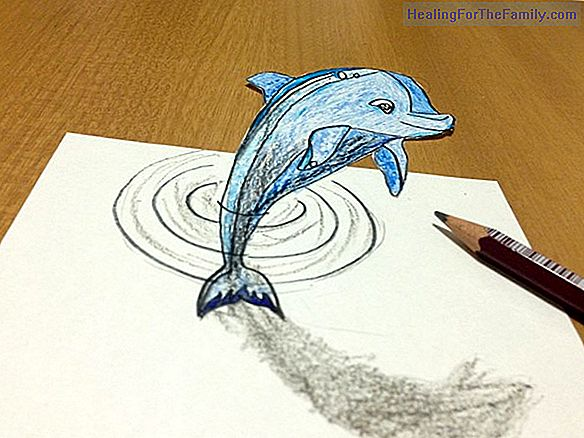How to make, step by step, a drawing of a dolphin