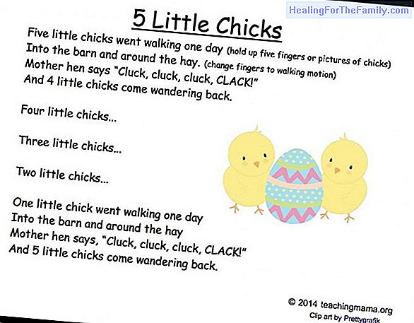 The chicks. Song to play with the baby