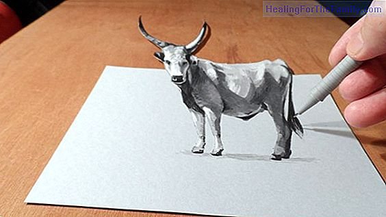 Videos to learn how to draw farm animals