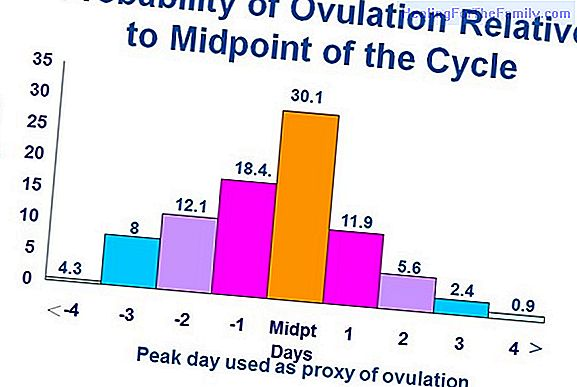 The menstrual cycle and the fertility of the woman