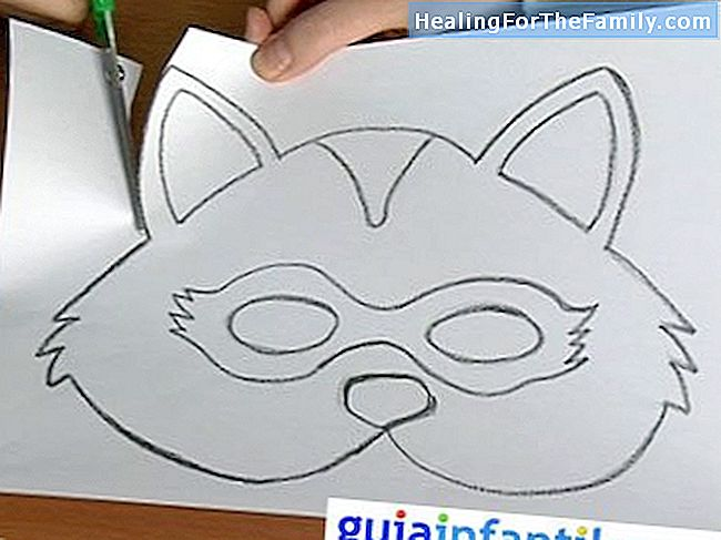 Raccoon mask  Carnival Crafts - Family 2017 - 2017